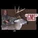 GMS Wildlife Management Software